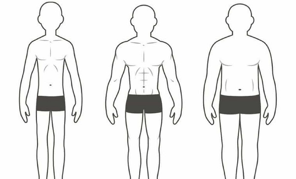 What a New York Subway Can Teach Us About Our Body Types